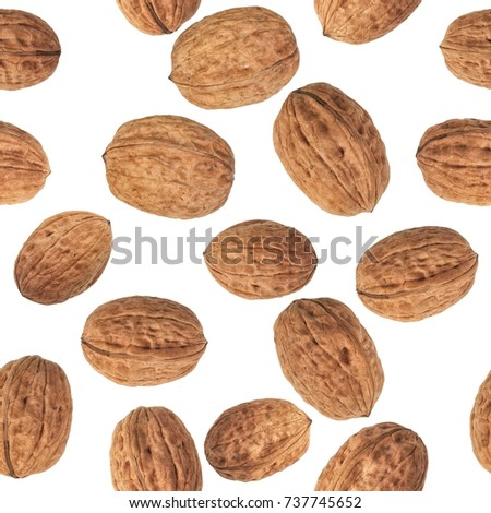 Walnuts Pattern, endless repeat, extra large file. Perfect to cover walls or presentation stands. #737745652