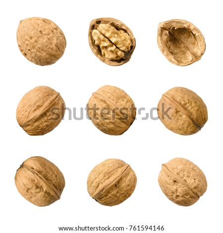 Walnuts, whole and opened, isolated on white background. Top views of the nuts and seeds of the common walnut tree Juglans regia, used as snack and for baking. Macro food photo close up from above. Foto d'archivio ©