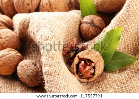 walnuts with green leaves, on burlap background