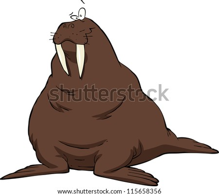 Walrus on a white background raster version