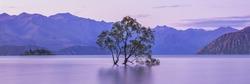 Wanaka Tree New Zealand. Lake Wanaka South Island NZ. Wanaka New Zealand Landscape. Tree in Lake With Scenic Mountain Landscape. Sunset Sky and Clouds. Beautiful Nature Scenery.