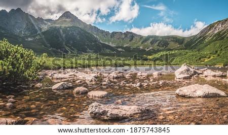 Wandering thru Belianske Tatry in High Tatras Zdjęcia stock ©