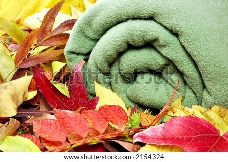 Warm blanket surrounded by autumn leaves ready for the colder weather