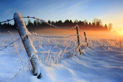 Warm cold winter sunset, last rays of setting sun coloring the fog golden in this winter sunset viewed in Estonia