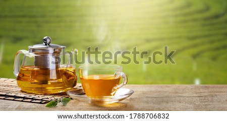 Warm cup of tea with teapot, green tea leaves on the wooden desk at morning in plantations with long banner background empty space for text,Organic product from the nature for healthy with traditional