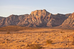 Warm dawn desert light in Nevada's Red Rock Conservation Area near Las Vegas.