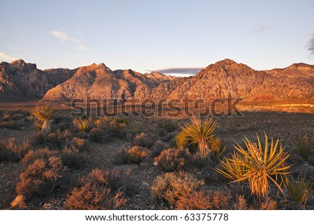 Warm dawn light at Red Rock Conservation area near Las Vegas Nevada. - stock photo