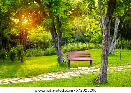 Warm evening in summer park, empty bench for rest