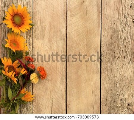 Warm Fall Colors And Sunflowers On Rustic Wood Background 703009573
