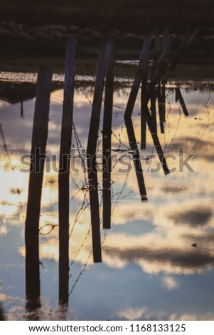 Warm glow of sun casting heavy shadows during morning with reflecting fence posts and drooping submerged wire #1168133125