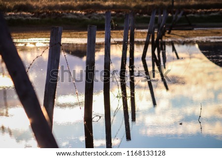 Warm glow of sun casting heavy shadows during morning with reflecting fence posts and drooping submerged wire #1168133128
