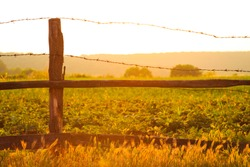 Warm glowing colorful orange country sunset over an open grassy pasture with a rustic wooden fence with barb wire strands at the top in the foreground in a scenic landscape.