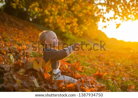 Warm moments of autumn. Toddler boy blue eyes enjoy autumn. Small baby toddler on sunny autumn day. Warmth and coziness. Happy childhood. Sweet childhood memories. Child autumn leaves background.