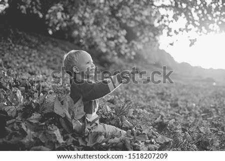 Warm moments of autumn. Toddler boy blue eyes enjoy autumn. Small baby toddler on sunny autumn day. Warmth and coziness. Happy childhood. Sweet childhood memories. Child autumn leaves background. #1518207209