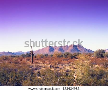 Warm skies in the Arizona desert mountains