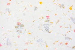 warm white hand made rough rice mulberry paper with red and yellow flower petal and seed texture background and wallpaper