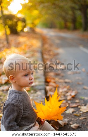 Warmth and coziness. Happy childhood. Sweet childhood memories. Child autumn leaves background. Warm moments of autumn. Toddler boy blue eyes enjoy autumn. Small baby toddler on sunny autumn day.