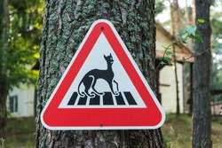 Warning Sign Beware of Cats, Playful Sign, Red Triangular Road Sign Warning about Cats.