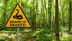 Warning sign beware of Snakes in infested area in the green forest