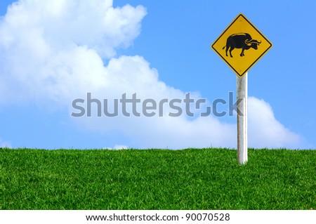 warning sign - Buffalo on the Lawn