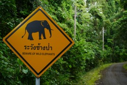 Warning sign to beware of wild elephants on the national park routes of Thailand.
