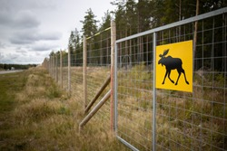 Warning sign with an image of a moose on a fence along a highway in focus, blurred background