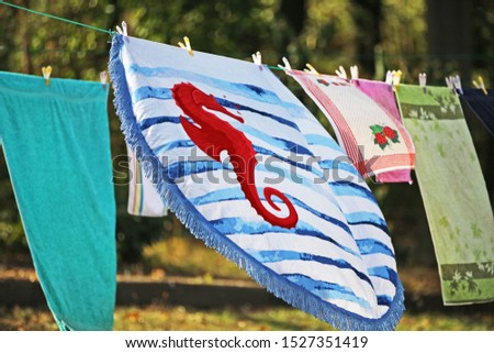 wash hangs to dry on the clothesline