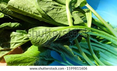 Wash Vegetables, Cantonese Vegetables,  Wash Vegetables With Water, Ingredients With Cantonese Vegetables.