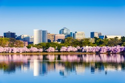 Washington, D.C. at the Tidal Basin during cherry blossom season with the Rosslyn business distict citycape.