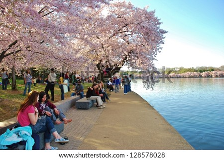 WASHINGTON, DC - APRIL 14: Cherry Blossom Festival on April 14, 2012 in Washington DC,USA. The festival is a spring celebration in Washington, D.C.and people from all over the world come to visit.
