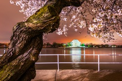 Washington, DC at the Jefferson Memorial during spring from the tidal basin.