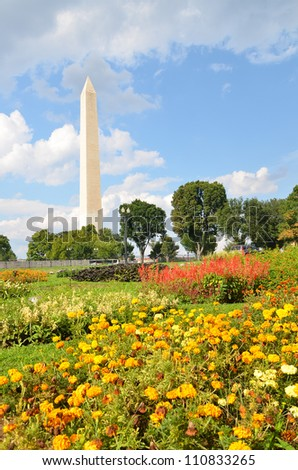 Washington DC, the Monument with foreground of Flowers Library in Tidal Basin