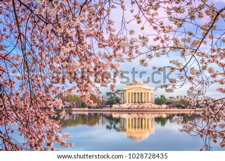 Washington DC, USA in spring season.
