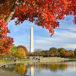Washington DC - Washington Monument from Constitution Gardens in Autumn