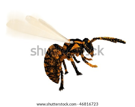 Wasp concept close up flying isolated on white background 3D render