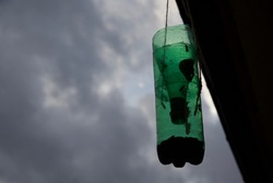 Wasp trap: a homemade wasp trap made from a plastic bottle hangs from the guttering of a rural French house