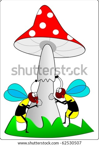 Wasps and toadstool