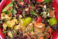 Wasps swarm and fly eating kitchen leftovers. Kitchen fruit and vegetable waste ready for garden compost. Rotten food peelings, skins and scraps as ecological fertilizer. Insects  on composting pile