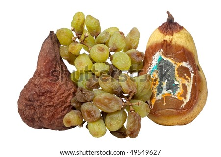 Wasted, Rotting Pears and Grapes