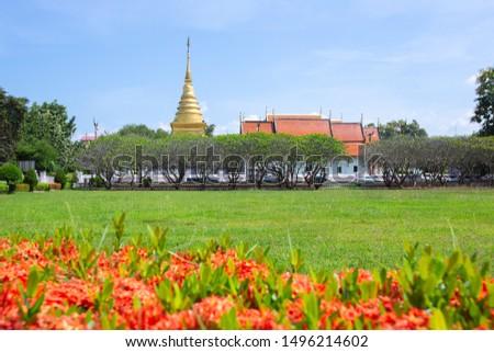 wat-that trave flower religion Thailand #1496214602