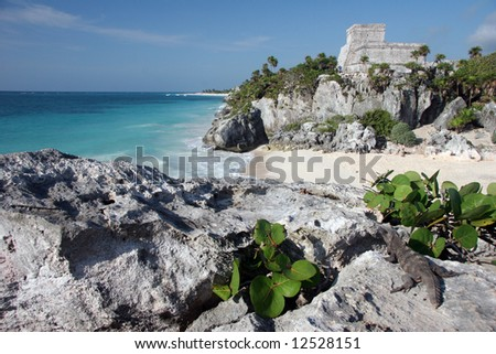 Watching the sandy beach and Tulum ruins with a lizard. Tulum. Yucatan. Mexico