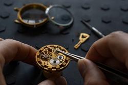 Watchmaker's workshop, mechanical watch repair. SPecial repair kit