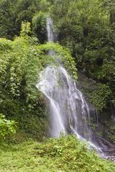 Watefall in Sikkim jungle, India