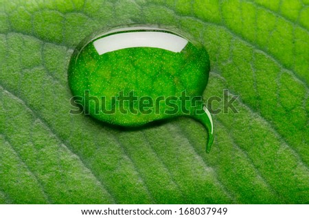 Water bubble talk on green leaf background