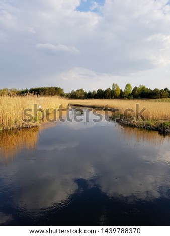Water channel. Augustowski Channel, Poland.