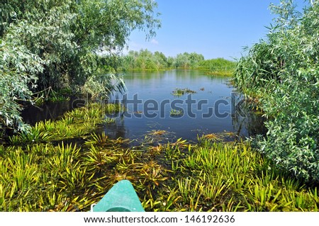 Water channel in the Danube delta with swamp vegetation and flooded forest