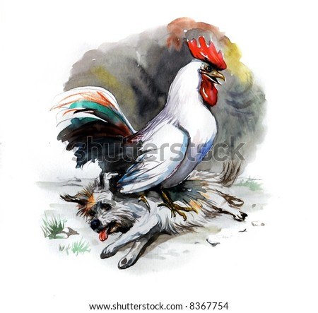 Water color hand made illustration. Rooster win over the dog. My own creation.