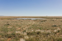 Water Dam in the Veld in the dry Northern Cape landscape of South Africa