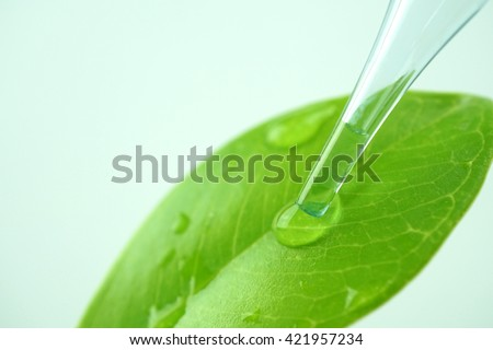 water drop from leaf and laboratory for natural chemistry concept ストックフォト ©
