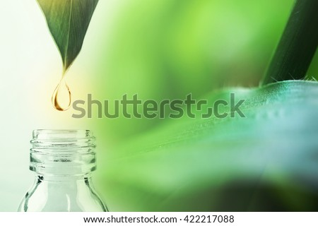 water drop from leaf and laboratory for natural chemistry concept